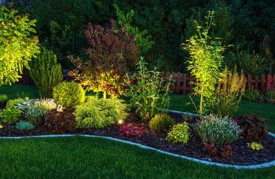Illuminated Garden:garden, illumination,gardening, illuminated, night, light, backyard, plant, plants, yard, summer, lawn, field, landscape, landscaping, flower, tree, floral, specie, nature, blossom, bloom, natural, botanical, botanic, sunny, green, grass, leaves, perennial, blooming, outdoor, house yard, garden works, work, horizontal